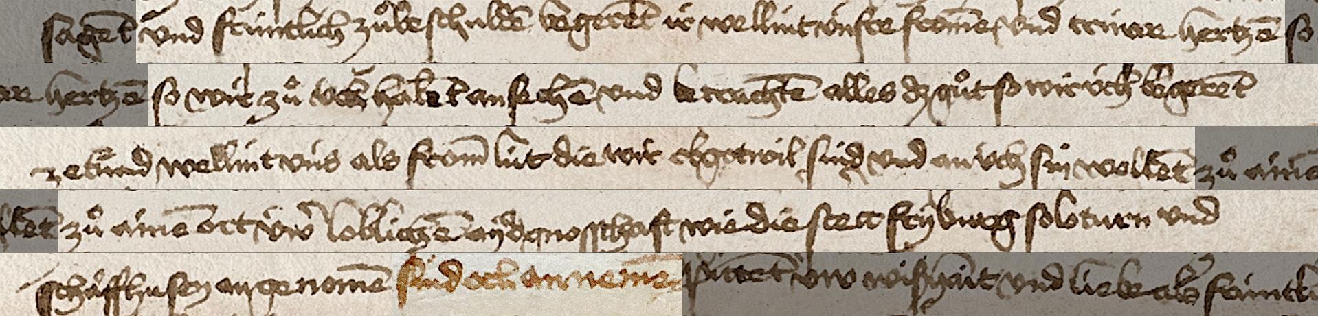 Die Appenzeller bitten ihre Eidgenossen von Luzern, sie wie Freiburg, Solothurn und Schaffhausen als Ort der Eidgenossenschaft anzunehmen