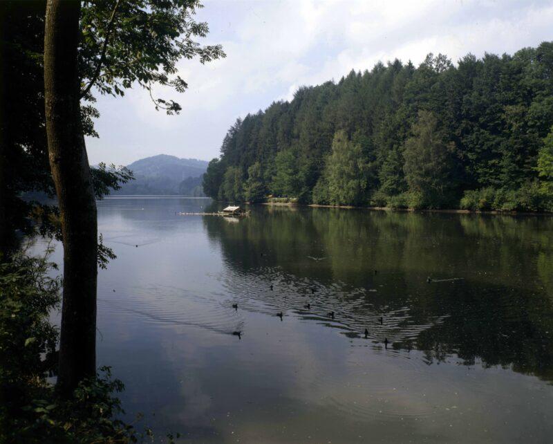 SAK und Stadt eröffnen Naturschutzgebiet Gübsensee | Jahr 1952